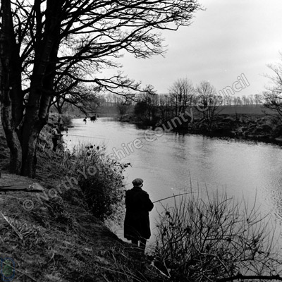 Fishing, River Wharfe, Thorpe Arch